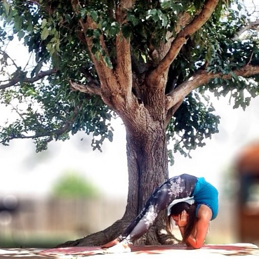 yoga12